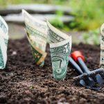 كيف تستثمر أموالك لتحقيق دخل شهري ثابت