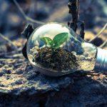 أبرز الفرص المتاحة للاستثمار النظيف (Green Investing)